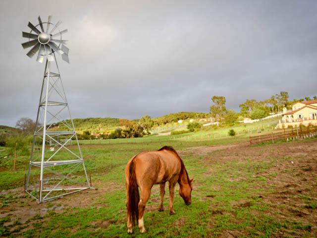 аэрация воды для скота